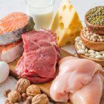 Todo lo que necesitas saber sobre la proteína