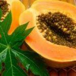 5 beneficios de las hojas de papaya