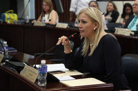 Tirotean vivienda de la diputada nacionalista Sara Medina