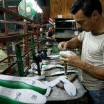 Sector microfinanciero gestiona 60 millones de dólares para apoyar Mipymes