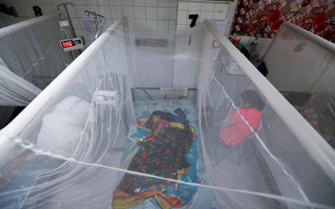 Mueren dos menores por dengue grave en el Materno Infantil