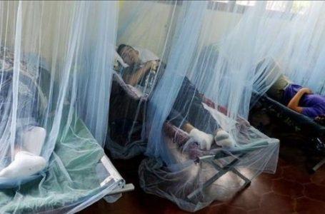 Próximamente realizaran inversión para combatir el dengue