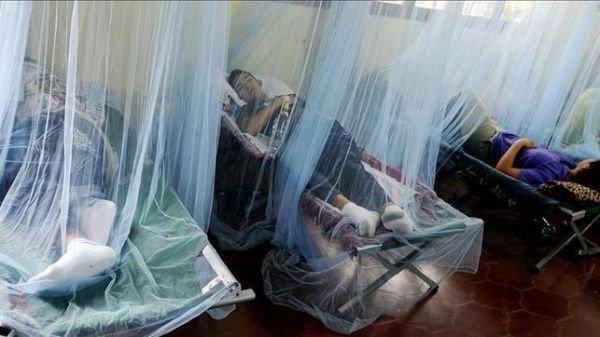 """""""La población no debe descuidar la lucha contra el dengue"""": Harry Bock"""