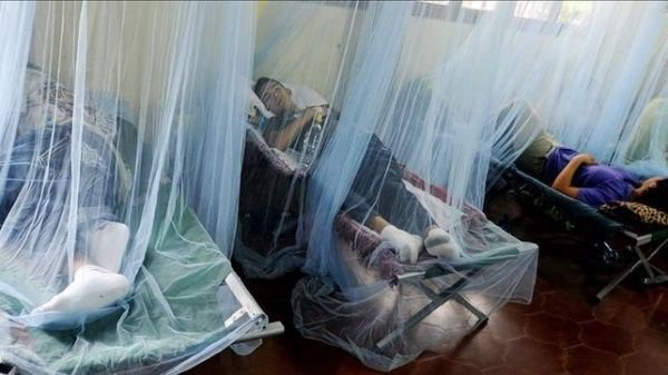 Casos de dengue continúan en ascenso ya se registran 14 mil
