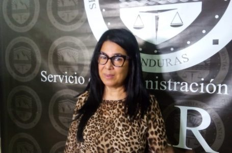 Ministra del SAR dispuesta a formar parte de la junta interventora de la ENEE