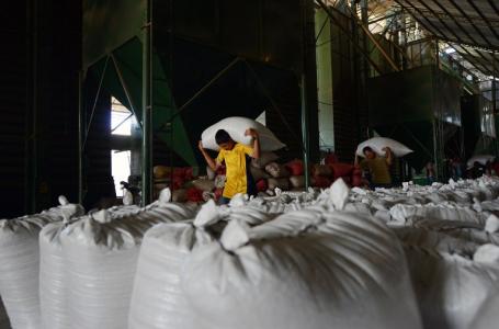 Unos $. 1,000 millones en divisas generará exportación de caféen actual cosecha