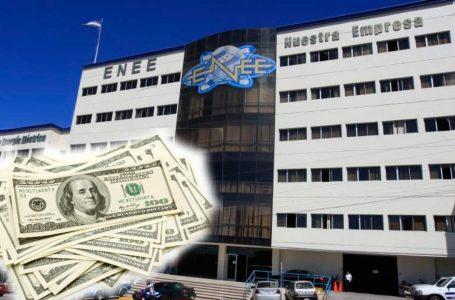 STENEE exige salida de interventora por incumplimiento de funciones y revelarse «jugosos salarios»