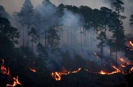 Bomberos ya cuentan con plan para combatir incendios en próxima temporada seca