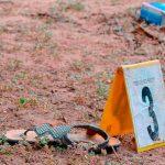 Buscan aumentar hasta 40 años la pena por el delito de femicidio