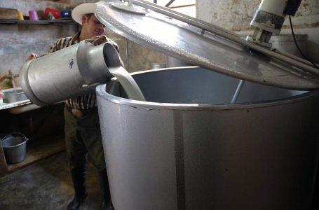 Producción de leche aumentará a 2 millones de litros diarios abriendo mercados de exportación