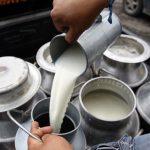 Unos L. 25 millones perdieron productores de leche en 45 días sin exportar