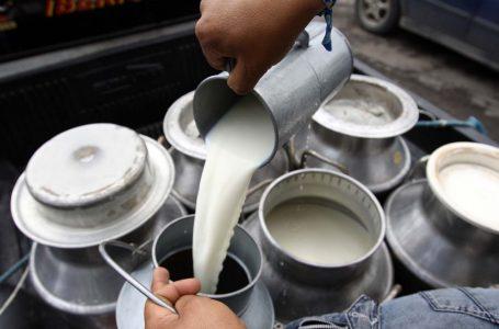 Producción de leche continúa estable pese a emergencias