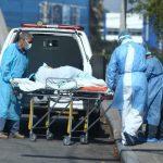 La mortalidad por Covid-19 en Cortés está bajando: Roberto Cosenza