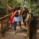 OMT destaca el potencial del turismo interno para impulsar la recuperación económica