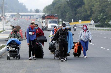 Más de 100 migrantes hondureños están desaparecidos en México: Itsmania Platero
