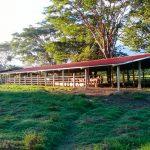 Agroturismo con un gran potencial en Olancho