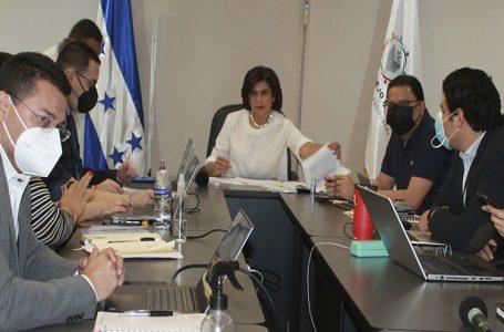 CNE sesionará hasta el próximo domingo con el regreso de Ana Paola Hall