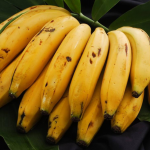 Honduras obligada a importar banano ante escasez de la fruta