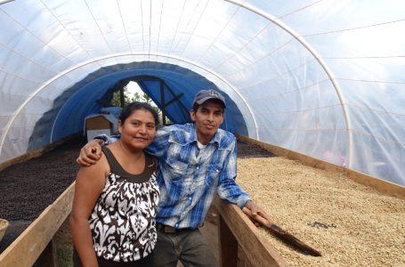Compradores internacionales visitan fincas de café en poblaciones indígenas de Lempira