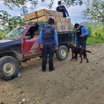 Honduras debe crear políticas firmes para combatir el comercio ilícito
