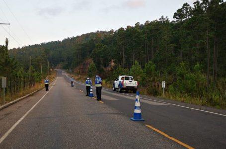 Tránsito reporta disminución en la pérdida de vidas en accidentes viales