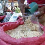 No se esperan grandes alzas en precios de granos básicos en primera temporada