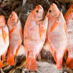 Vendedores de mariscos esperan levantar ventas durante la Semana Santa