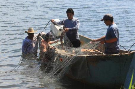 Mipymes pesqueras del caribe hondureño podrán acceder a créditos