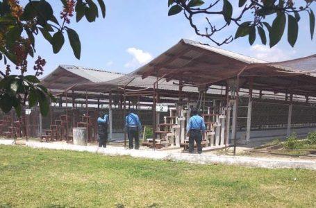 MP investiga supuesta malversación de fondos en proyecto porcino avícola del centro penal de Comayagua