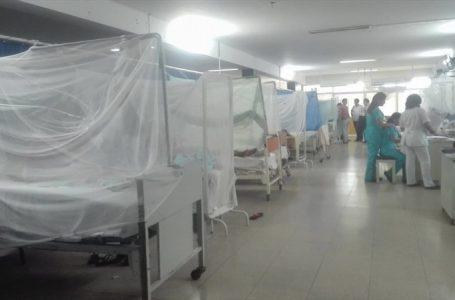 En un 70 por ciento baja la incidencia de dengue en la capital: Harry Book