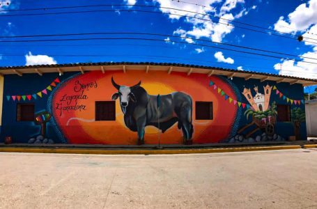 Las calles de Lamaní y Lejamaní adornadas por bellos murales que fomentan el turismo