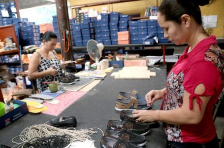Urgen estimular Mipymes para poder recuperar empleos perdidos