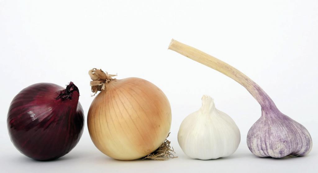 Alimentos buenos para las varices: cebolla y ajo