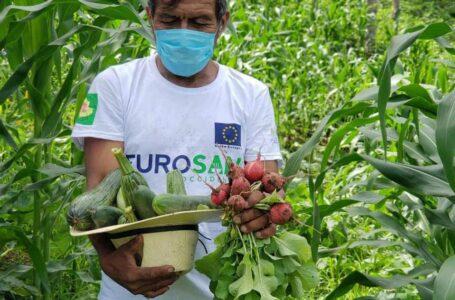 Más de 80 mil familias serán beneficiadas con proyecto de seguridad alimentaria de la UE