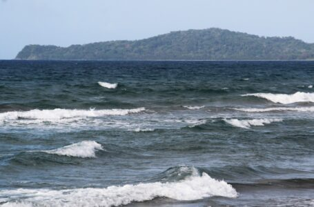 «Océanos sanos», un revulsivo vital contra la pandemia climática
