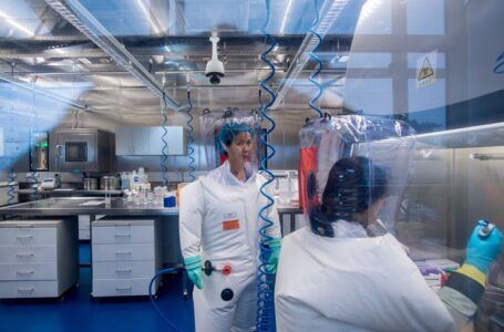 """""""El coronavirus se escapó del laboratorio de Wuhan"""": fundador de Moderna"""