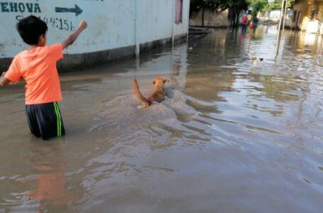 Dinaf insta a estar vigilantes de la niñez ante paso de fenómeno climatológico por el país
