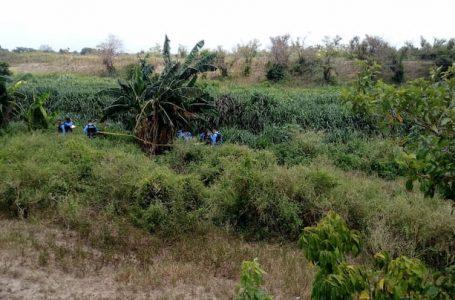 Encuentran tres hombres muertos en la zona norte del país