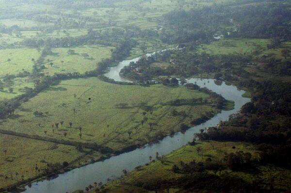 Hay mexicanos y colombianos que participan en la invasión de la Biósfera del Río Plátano
