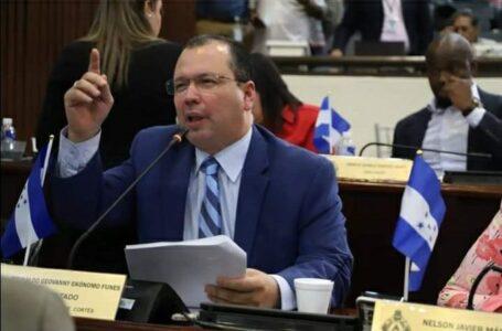 Diputados de Libre tienen doble discurso en cuanto al presupuesto para el CNE