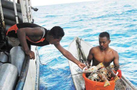Pesca ilegal en Honduras afecta la economía de los pescadores y destruye el ecosistema de las costas