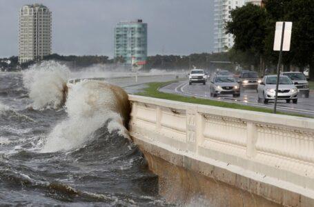 La tormenta Elsa tocó tierra en Florida con vientos de 100 kilómetros por hora