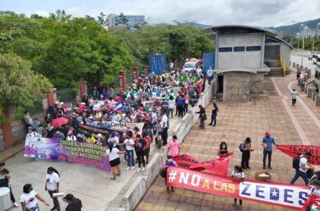 Múltiples organizaciones sociales protestan contra las ZEDE en la capital