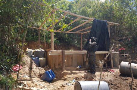 Erradican otra plantación de arbustos de coca y un narcolaboratorio en Colón