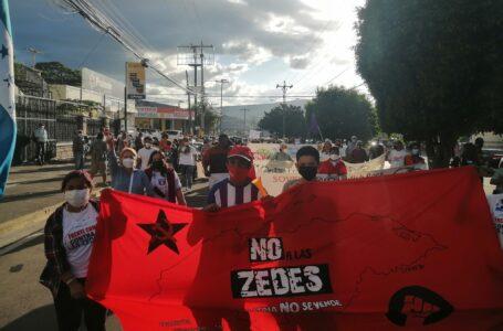 Se debe protestar de forma articulada, no con convocatorias individuales en contra de las ZEDE