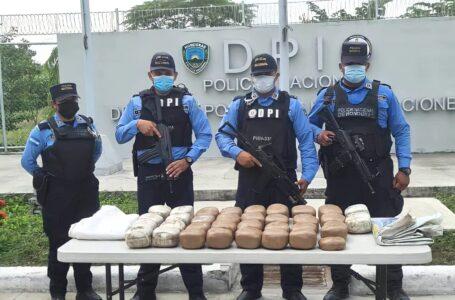 Decomisan 75 libras de marihuana valorada en L. 250 mil en Cortés