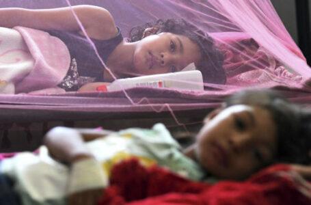 Diariamente ingresan unos 8 menores al Hospital Escuela por dengue