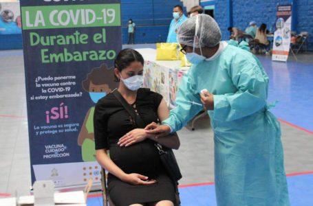 Sigue la apatía de las mujeres embarazadas para vacunarse contra el COVID-19