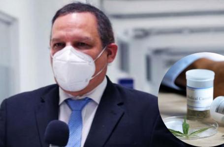 Científico hondureño pide a autoridades aprobar uso medicinal de la marihuana