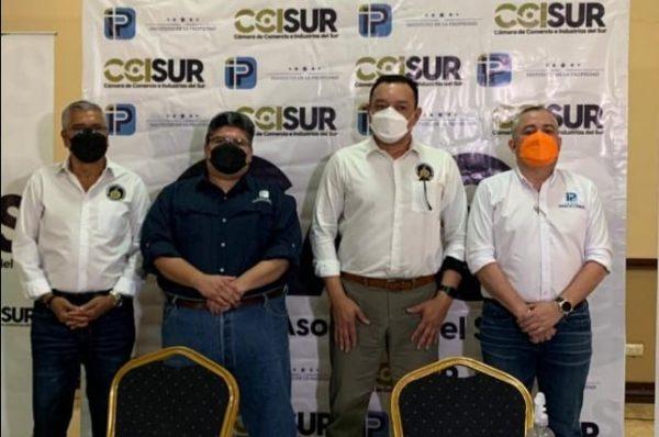 IP y la CCISur acuerdan acciones para administrar el Registro Inmueble y Mercantil de Choluteca